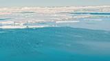 Ice floe floating in the ocean - 233724684