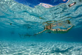 snorkeling in french polynesia with stingray - 233741653