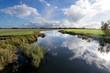 Leinwandbild Motiv Dutch polder landscape in the province of Friesland