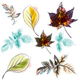 Set of autumn leaves in watercolor style - 233837227
