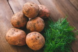 Fresh potatoes and dill lie on a table made of natural wood in the village - 233918815