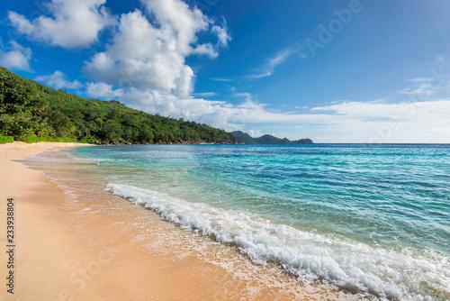 Caribbean beach and tropical island. Summer vacation and tropical beach concept.