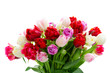 Bouquet of fresh tulips flowers isolated on white background