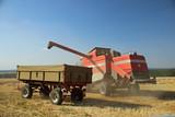 Mähdrescher beim abladen des Getreides  - 233975260