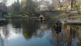 A house for swans on a lake in a park in the city of Lviv Ukraine - 233984634