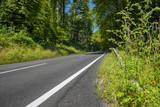 landstraße im pfälzer wald 3 © apfelweile