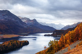 Aerial view on autumn lake Sils (Silsersee) in Swiss Alps. Colorful forest with orange larch and snowy mountains on background. Switzerland, Maloja region, Upper Engadine. Landscape photography - 234044028