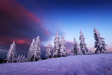 Fantastic orange winter landscape in snowy mountains glowing by sunlight. Dramatic wintry scene with snowy trees. Christmas holiday concept. Carpathians mountain, Ukraine, Europe - 234045427