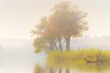 verträumte Flusslandschaft mit Bäumen und Gras - 234057464