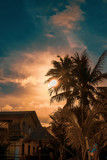 Palm trees silhouette against dramatic dark blue and orange sunset. Filter toned effect, vibrant colors. Copy space - 234089028