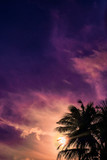 Palm trees silhouette against dramatic purple evening sky. Filter toned effect, vibrant colors. Vertical - 234089060