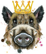 Leinwanddruck Bild - Watercolor portrait of wild boar with gold crown