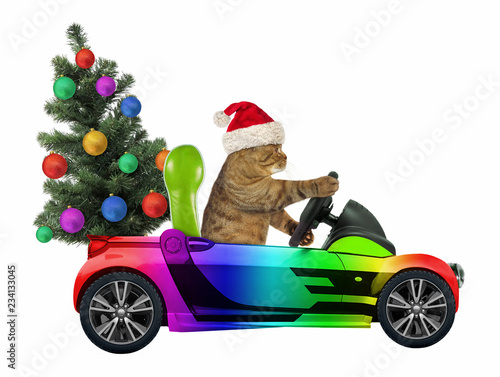 The cat in the Santa Claus hat carries a Christmas tree in the rainbow car. White background.