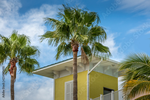 Florida colored building with palm tree