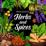 Seasonings, herbs and spices shop. Vector poster - 234206655