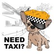 Dog in a cap taxi driver. Dog on the background of the city. Vector illustration - 234252858