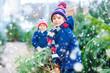 Leinwandbild Motiv two little kid boys buying christmas tree in outdoor shop