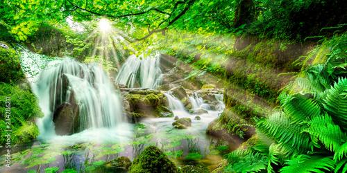 Leinwandbild Motiv Idyllischer Wald mit Wasserfällen
