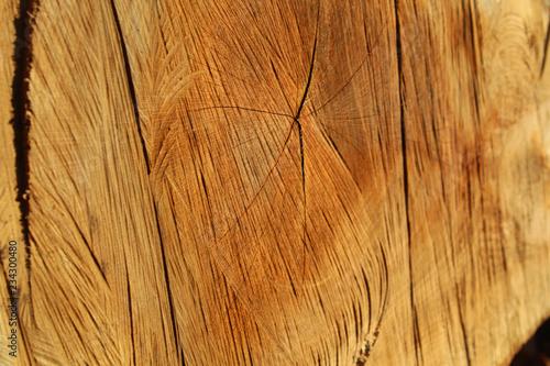 Holz Beschaffenheit  - 234300480