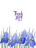 Greeting card. With hand drawn lettering and watercolor irises