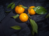Three mandarins with green leaflets on a dark wooden background, side view, close-up.