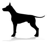 A detailed animal silhouette of a pet dog © Christos Georghiou