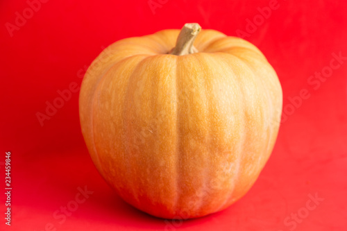 pumpkin on colorful background - 234459846