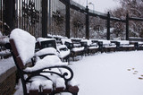 snow-covered benches, branches and trees in the city park