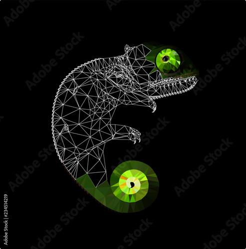 Niski poli- kameleon na czarnym tle, wektorowa ilustracja EPS 10 odizolowywający. Wieloboczne styl i modny nowoczesny design logo wireframe. Nadaje się do nadruku na t-shircie.