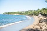 Plage et cocotiers en Martinique © Guillaume