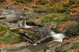 Small mountain waterfall in autumn. A beautiful landscape full of peace. Looking at the mountain stream, you can relax and think.