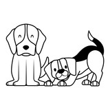 dogs pet on white background