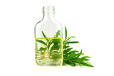 Tea Tree Essential Oil in a Bottle (Melaleuca). Isolated on White Background. - 234563225