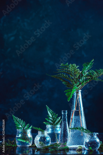 Clear glass bottles and vases with green fern leaves on a dark background. Natural decorations concept on a dark background with copy space