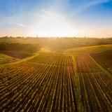 Aerial view, Vineyard Sunrise in autumn, Bordeaux Vineyard, France - 234643000