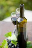 Red wine - 234684491