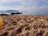 Mer,plage  © stephane