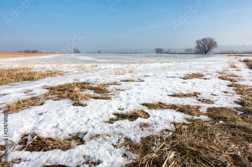 stille im winter im Nationalpark Unteres Odertal bei blauem himmel und sonnenschein