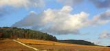 paysage d'automne - 234854061