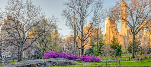Central Park, New York City in spring - 234867414