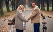 Leinwandbild Motiv Senior couple in park in autumn