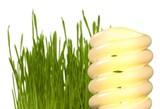 Light Bulb and Grass - 234960468