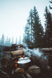 Campfire in the moody forest
