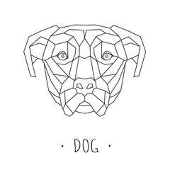 Dog stylized triangle polygonal model. Vector illustration