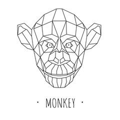 Monkey stylized triangle polygonal model. Vector illustration