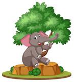 Isolated elephant under the tree
