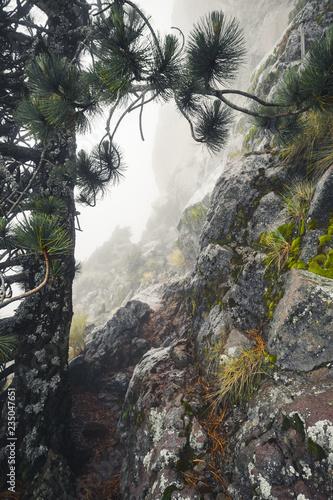 mountain peak rocks - 235047651