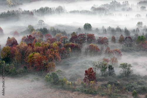 Paesaggio autunnale con nebbia e foschie, Lombardia, Italia - 235094213