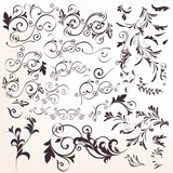 Big collection of vector calligraphic flourishes for design - 235108266