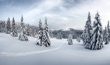 Fototapety Fantastic winter landscape with snowy trees. Carpathian mountains, Ukraine, Europe. Christmas holiday concept